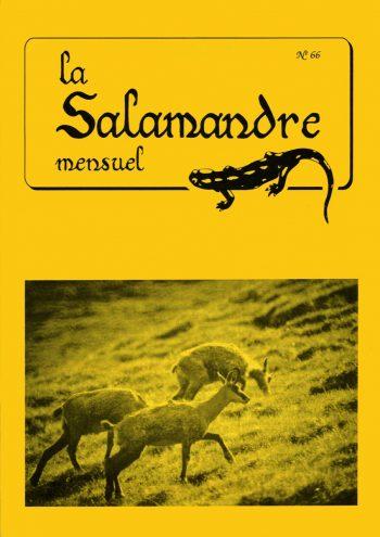 Couverture de La Salamandre n°66