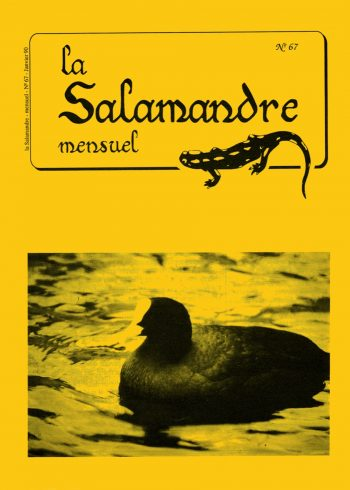 Couverture de La Salamandre n°67