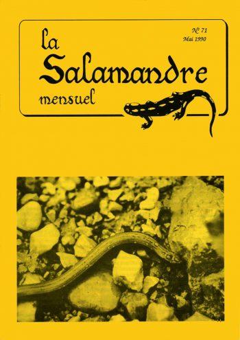 Couverture de La Salamandre n°71