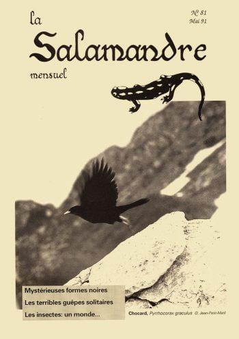 Couverture de La Salamandre n°81