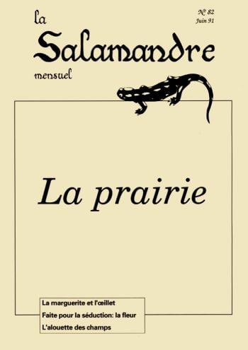 Couverture de La Salamandre n°82