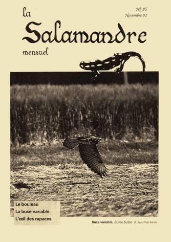 Couverture de La Salamandre n°85