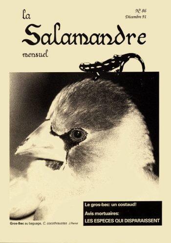 Couverture de La Salamandre n°86