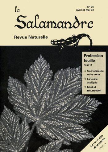 Couverture de La Salamandre n°95