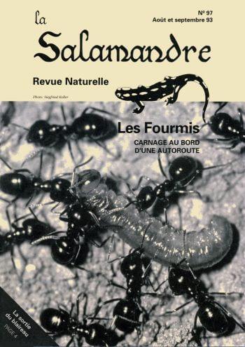 Couverture de La Salamandre n°97