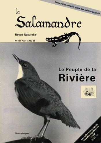 Couverture de La Salamandre n°101