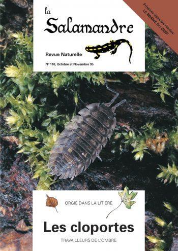 Couverture de La Salamandre n°110