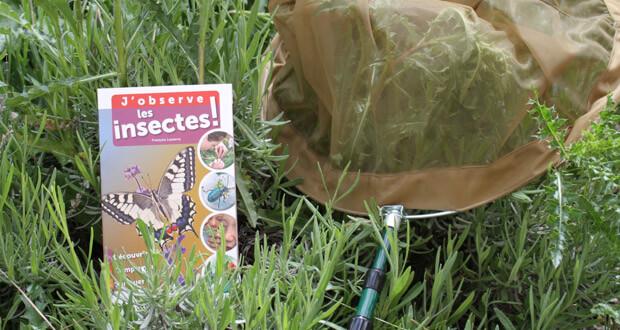 j-observe-les-insectes