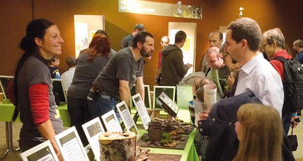 Festival Salamandre : labo-découvertes