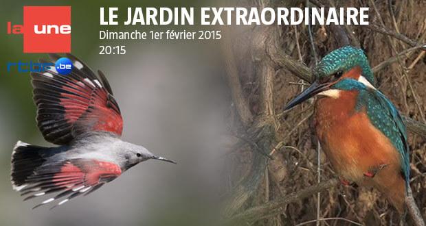 Le jardin extraordinaire dimanche 1er février 2015 sur RTBE La Une