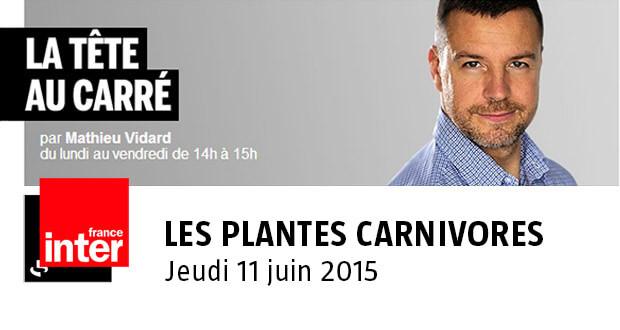 Les plantes carnivore sur France Inter, la Tête au Carré, jeudi 11 juin 2015